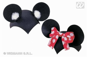 Mickey-mini mouse